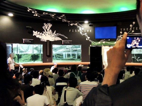 須磨水族館13