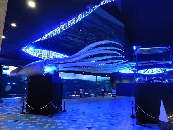 須磨水族館40