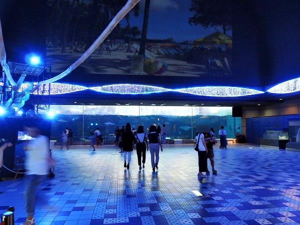 須磨水族館11