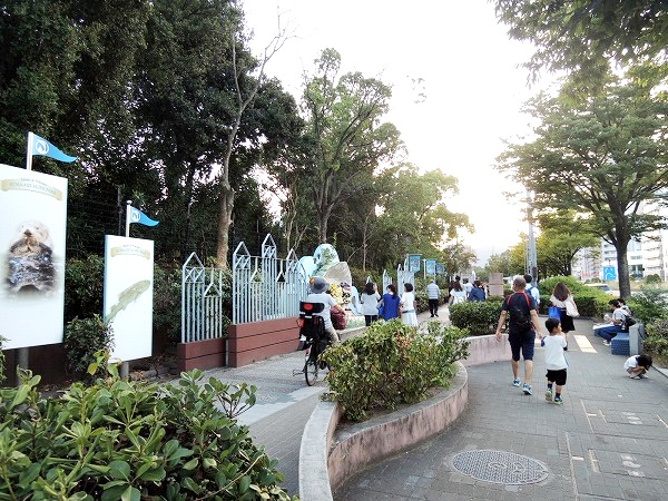 須磨水族館6