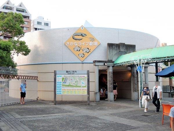 須磨水族館12