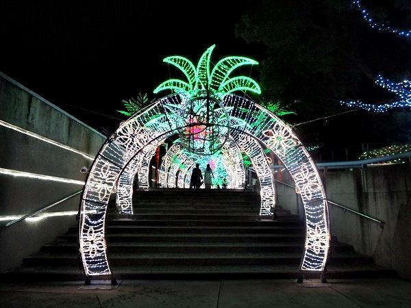 須磨水族館34