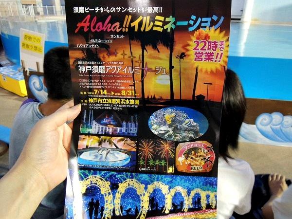 須磨水族館17