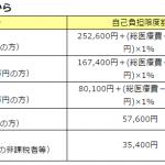 %e9%ab%98%e9%a1%8d%e7%99%82%e9%a4%8a%e8%b2%bb
