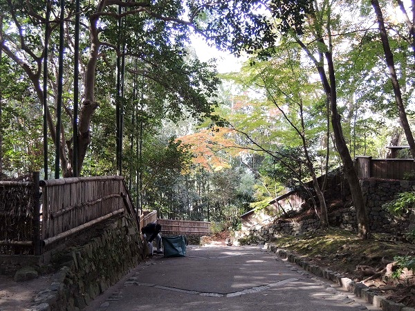 法念院の通路