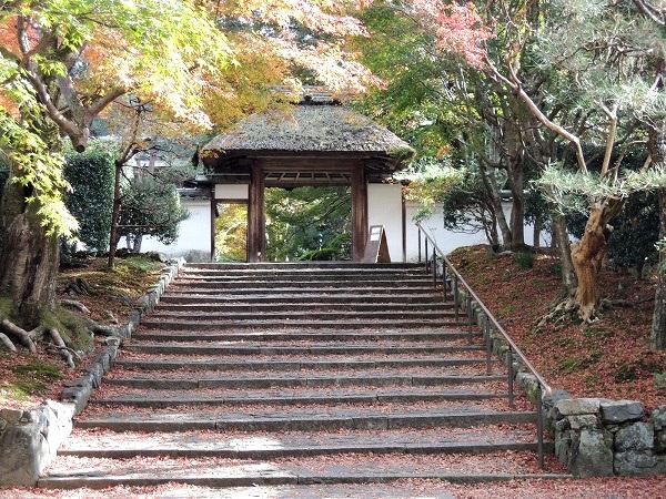 安楽寺の階段と山門