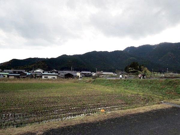 円通寺駐車場前の田園風景