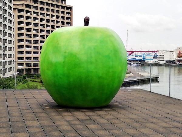 兵庫県立美術館青りんご