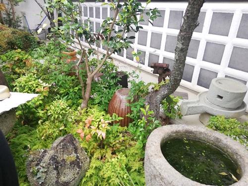 一休庵の庭