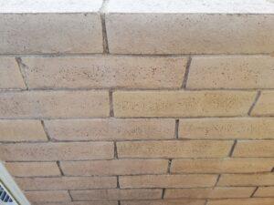 苔や黒カビが取れた塀